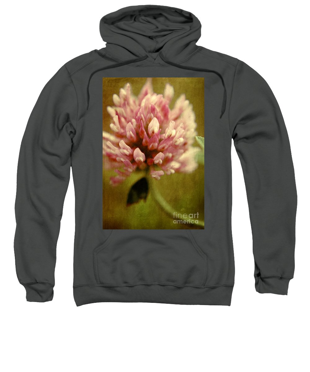 Clover Prints Sweatshirt featuring the photograph Vintage Clover by Aimelle