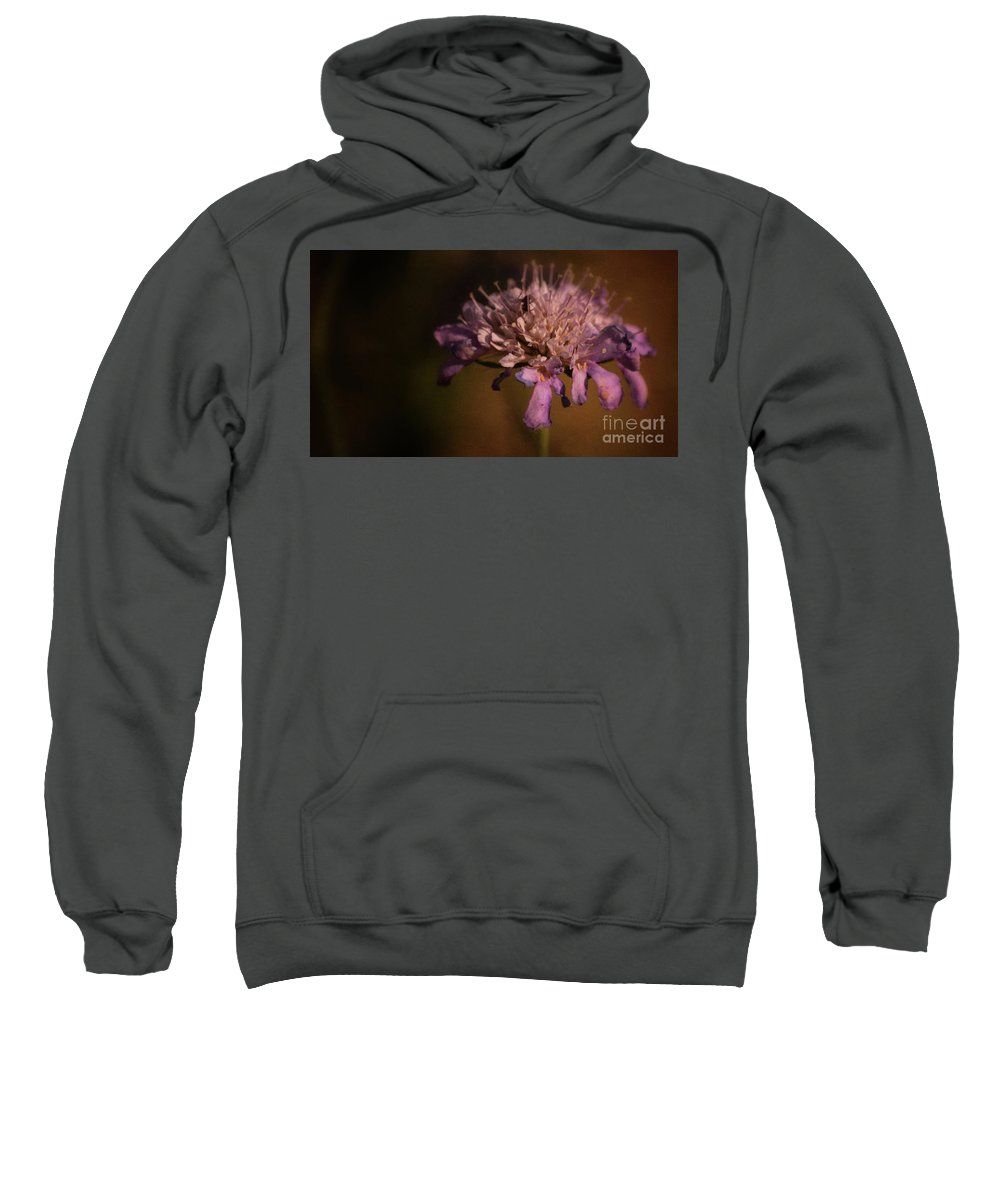 Violet Sweatshirt featuring the photograph Viola by Gaby Swanson