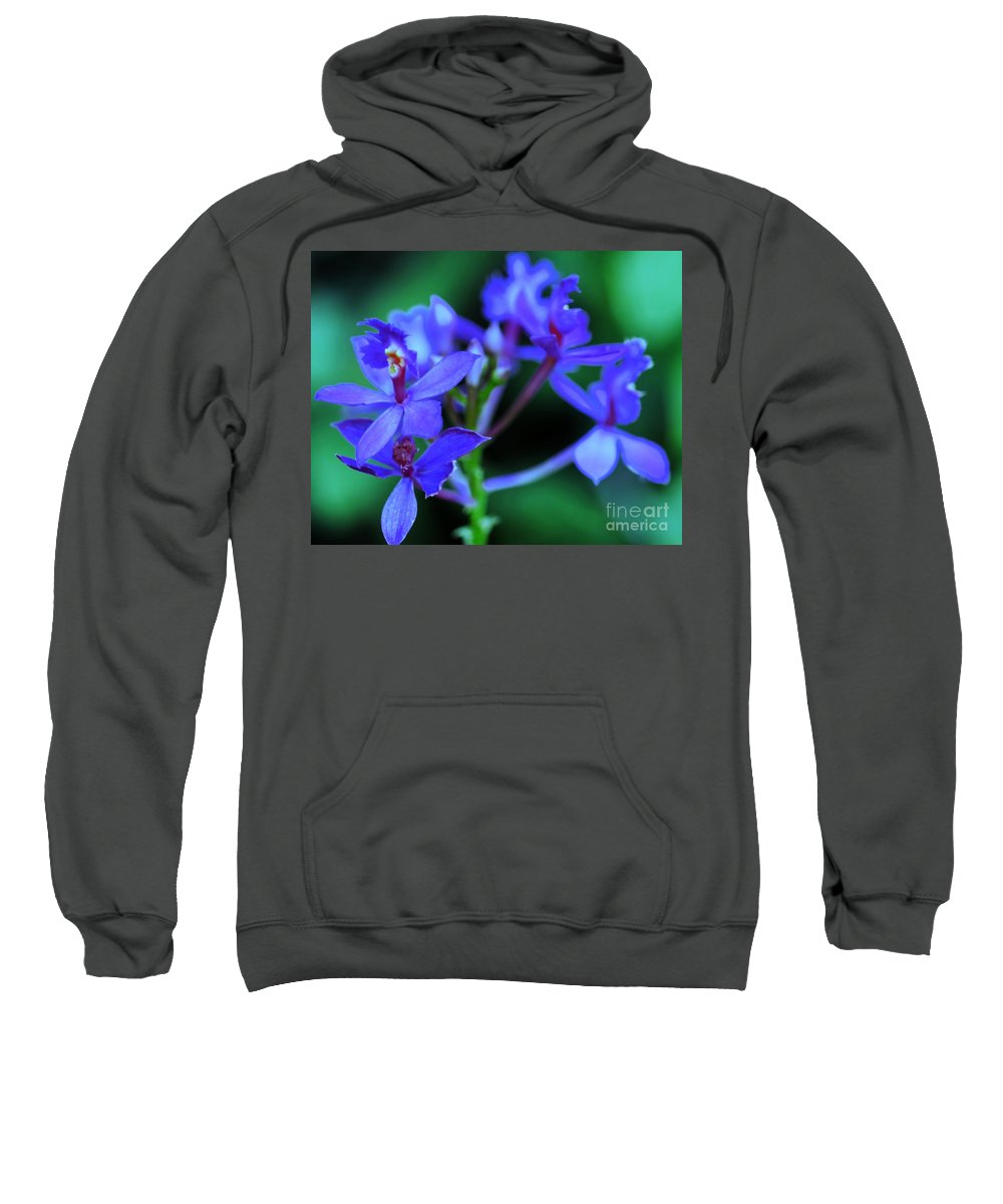 Orchid Sweatshirt featuring the photograph Violet Orchids by Kathleen Struckle