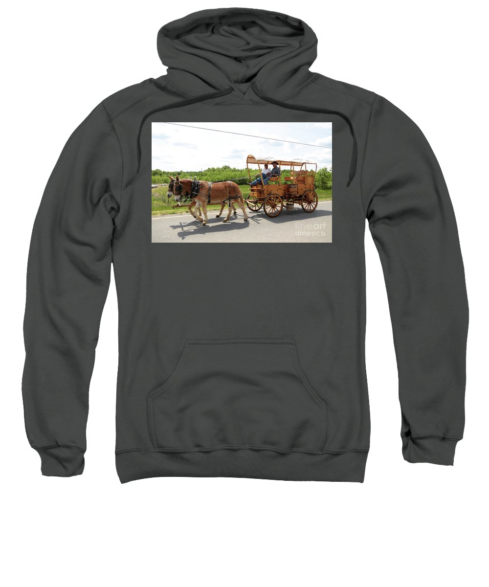 Mule Sweatshirt featuring the photograph Wagon 13 by Dwight Cook