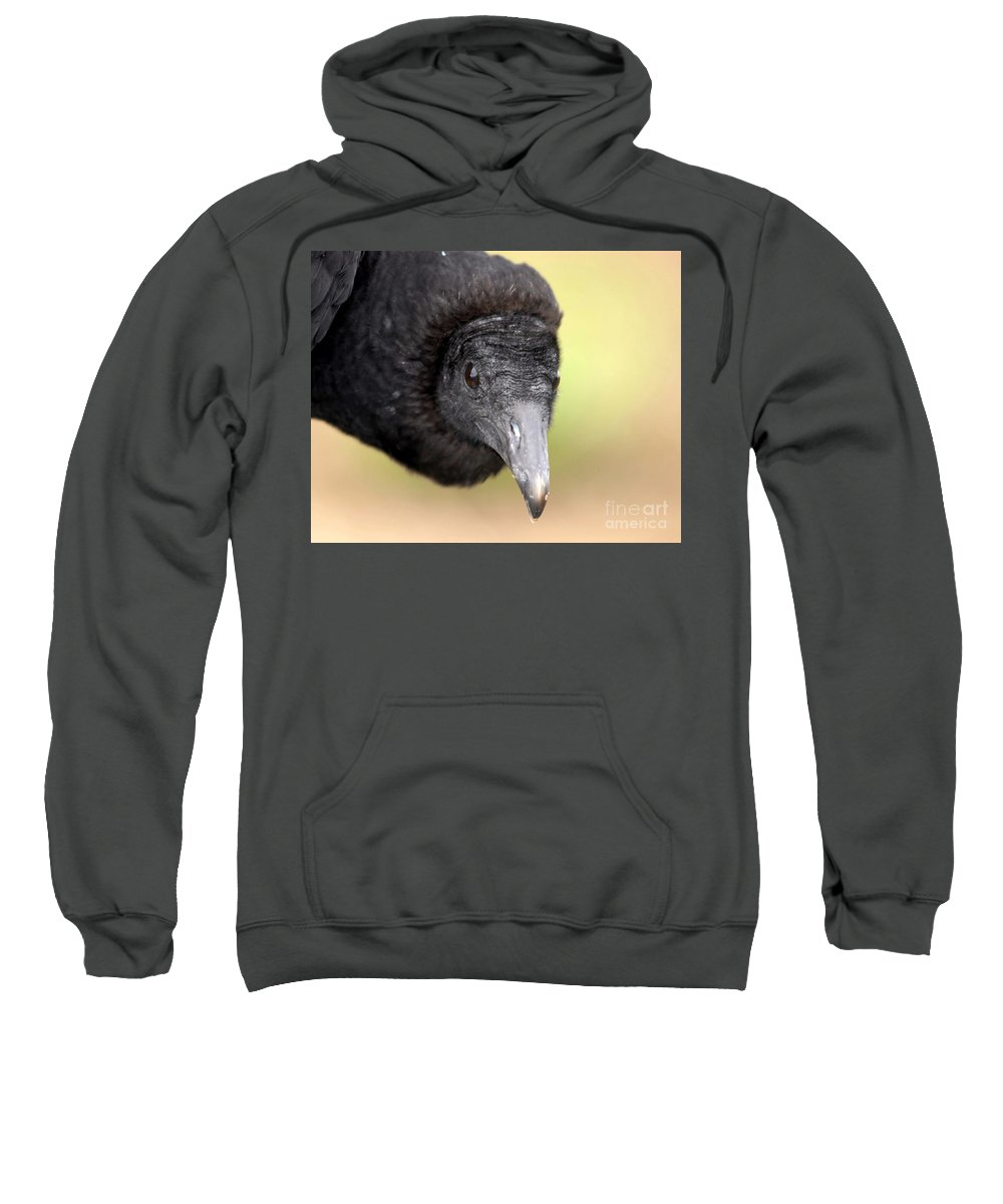 Black Vulture Sweatshirt featuring the photograph Waiting For You by David Lee Thompson
