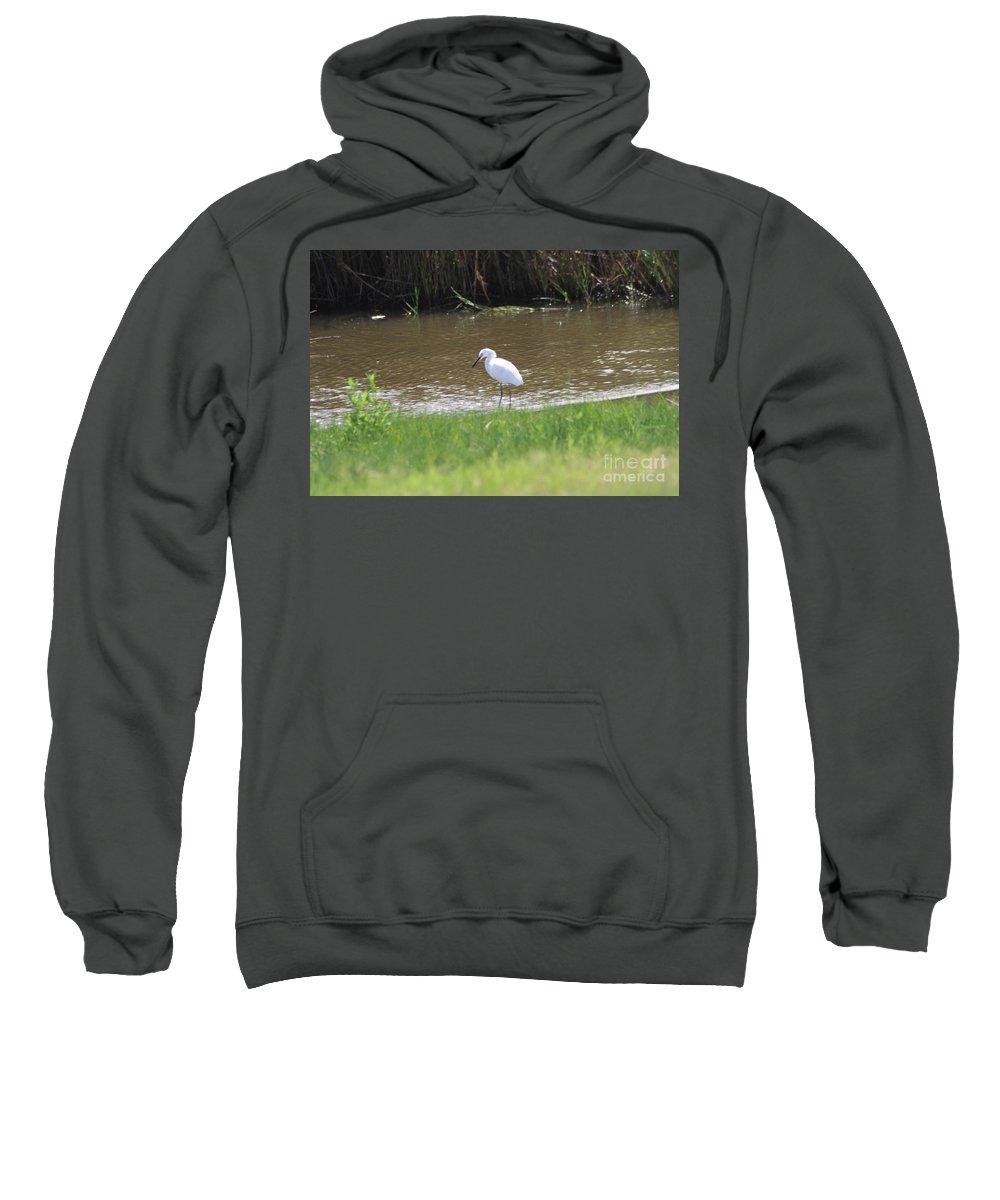 White Sweatshirt featuring the photograph Waiting by John W Smith III