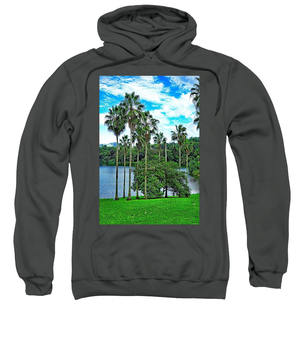 Waokele Pond Sweatshirt featuring the photograph Waokele Pond Palms And Sky by Robert Meyers-Lussier