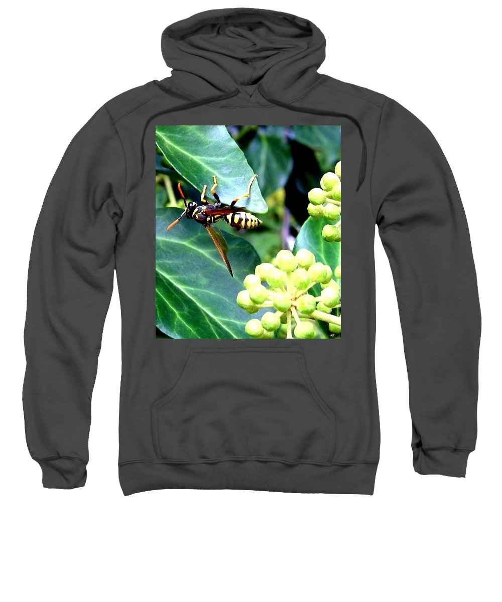 Wasp Sweatshirt featuring the photograph Wasp On The Ivy by Will Borden