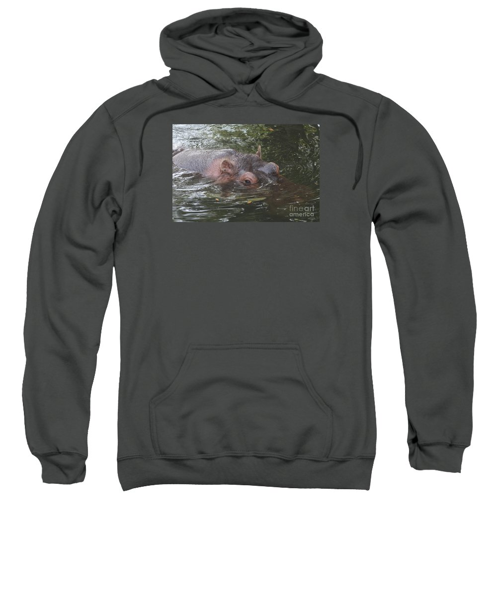 Hippo Sweatshirt featuring the photograph Watching Out by Christiane Schulze Art And Photography