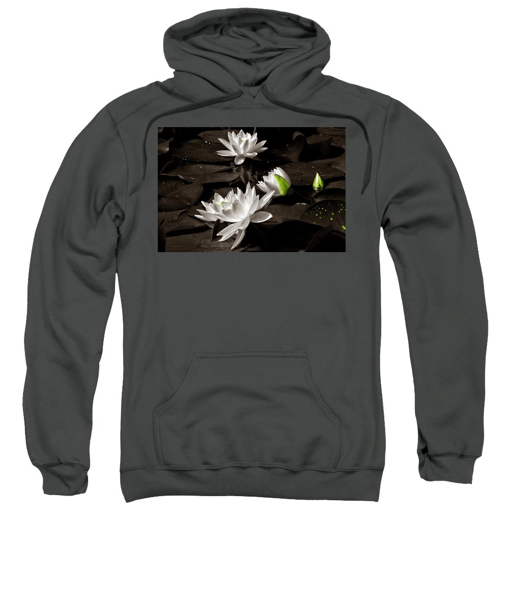 Water-lilies Sweatshirt featuring the photograph Water Lilies by Wolfgang Stocker