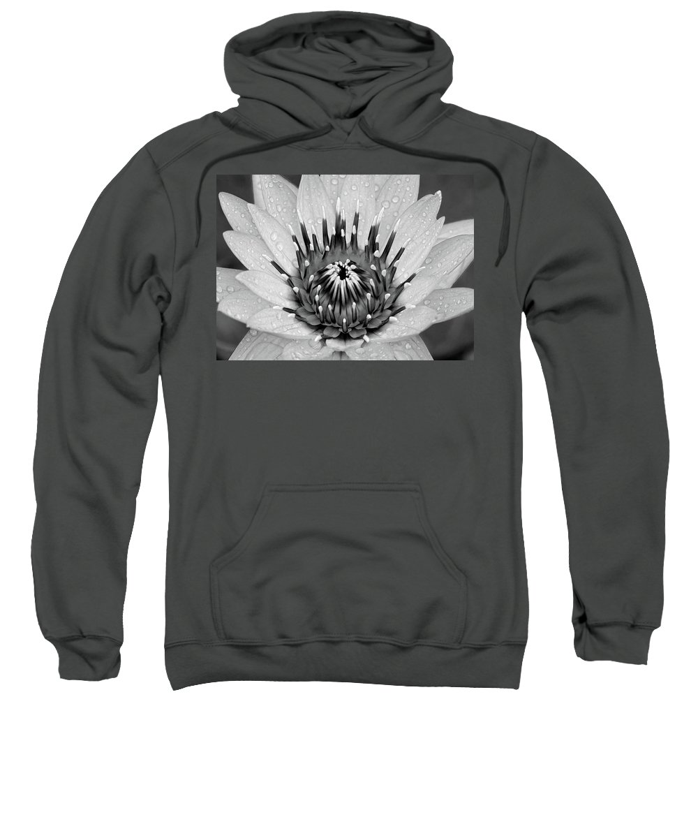 Water Lily Flower Sweatshirt featuring the photograph Water Lily B/w by Ronda Ryan