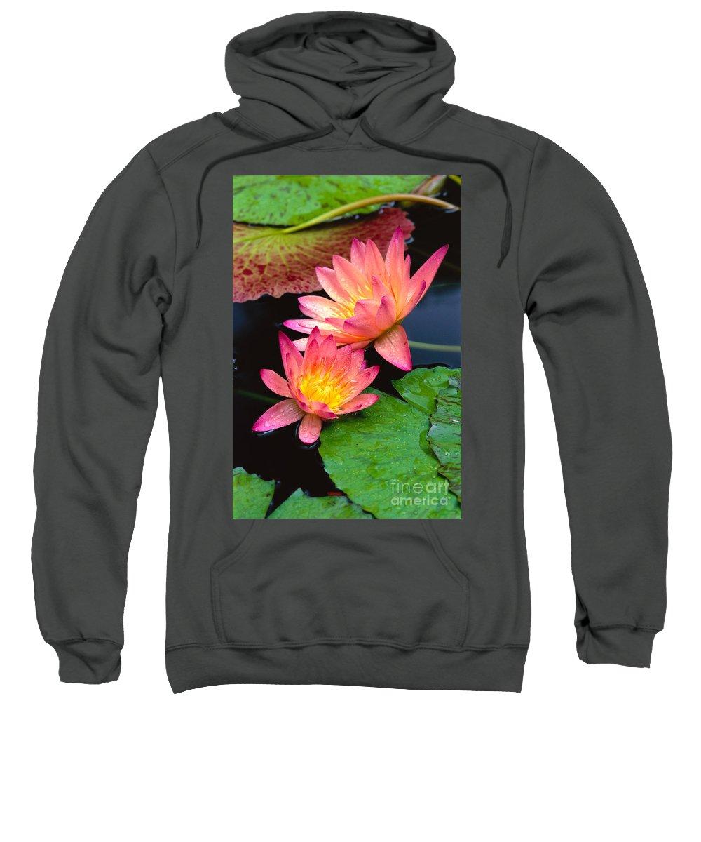 Bill Brennan Sweatshirt featuring the photograph Water Lily by Bill Brennan - Printscapes