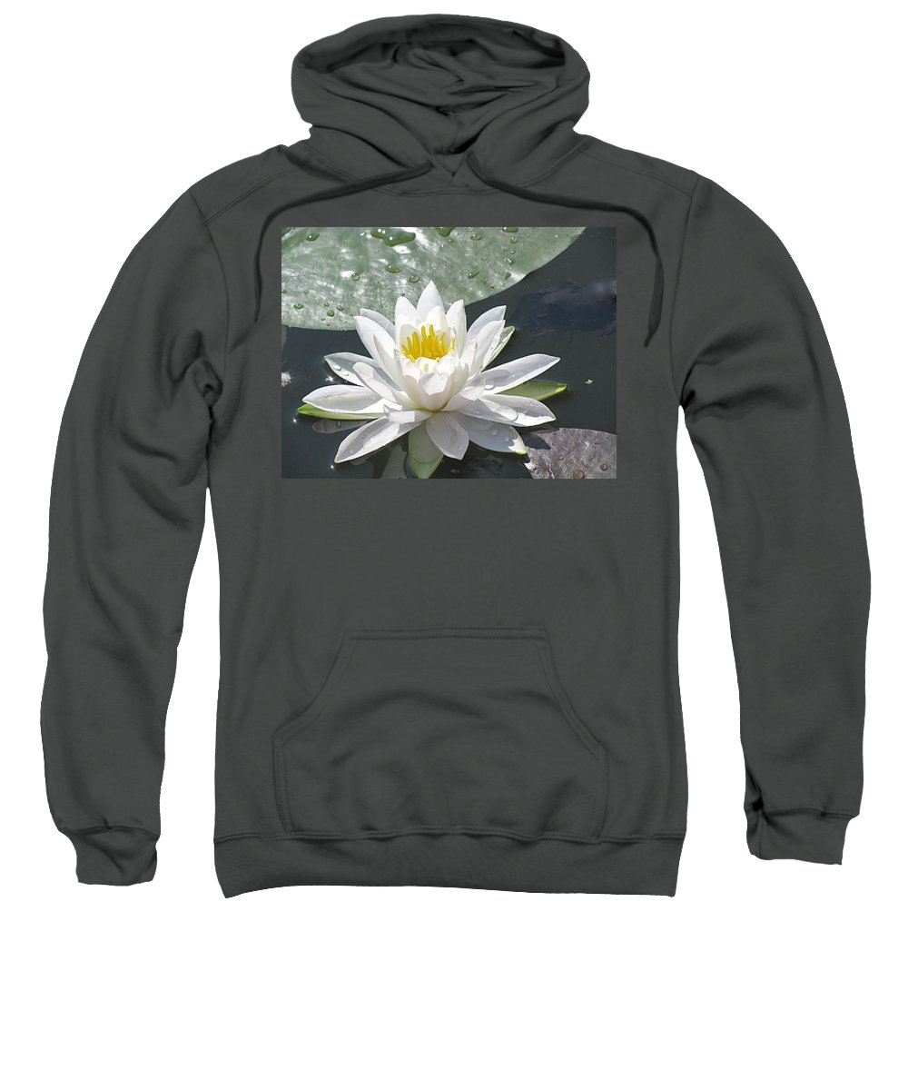 Background Sweatshirt featuring the photograph Water Lily by Jack R Perry