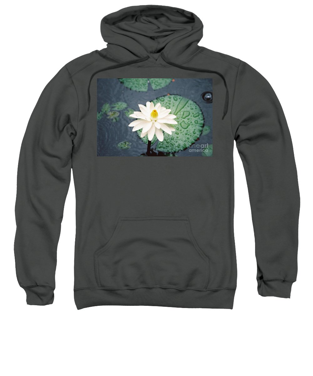 Flowers Sweatshirt featuring the photograph Water Lily by Kathy McClure
