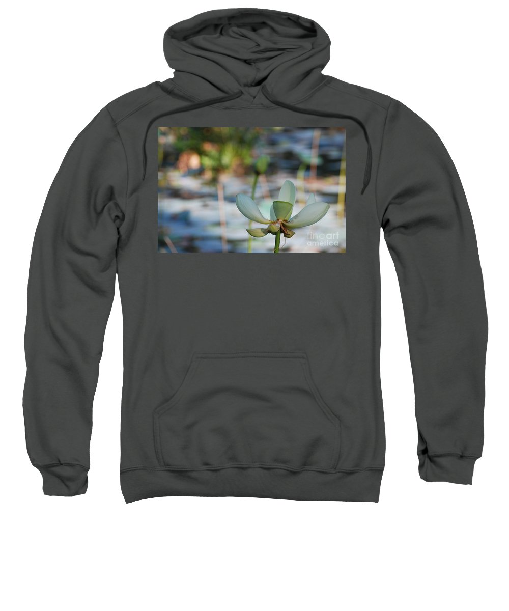 Botanical Sweatshirt featuring the photograph Waterlily Wash Horizontal by Heather Kirk