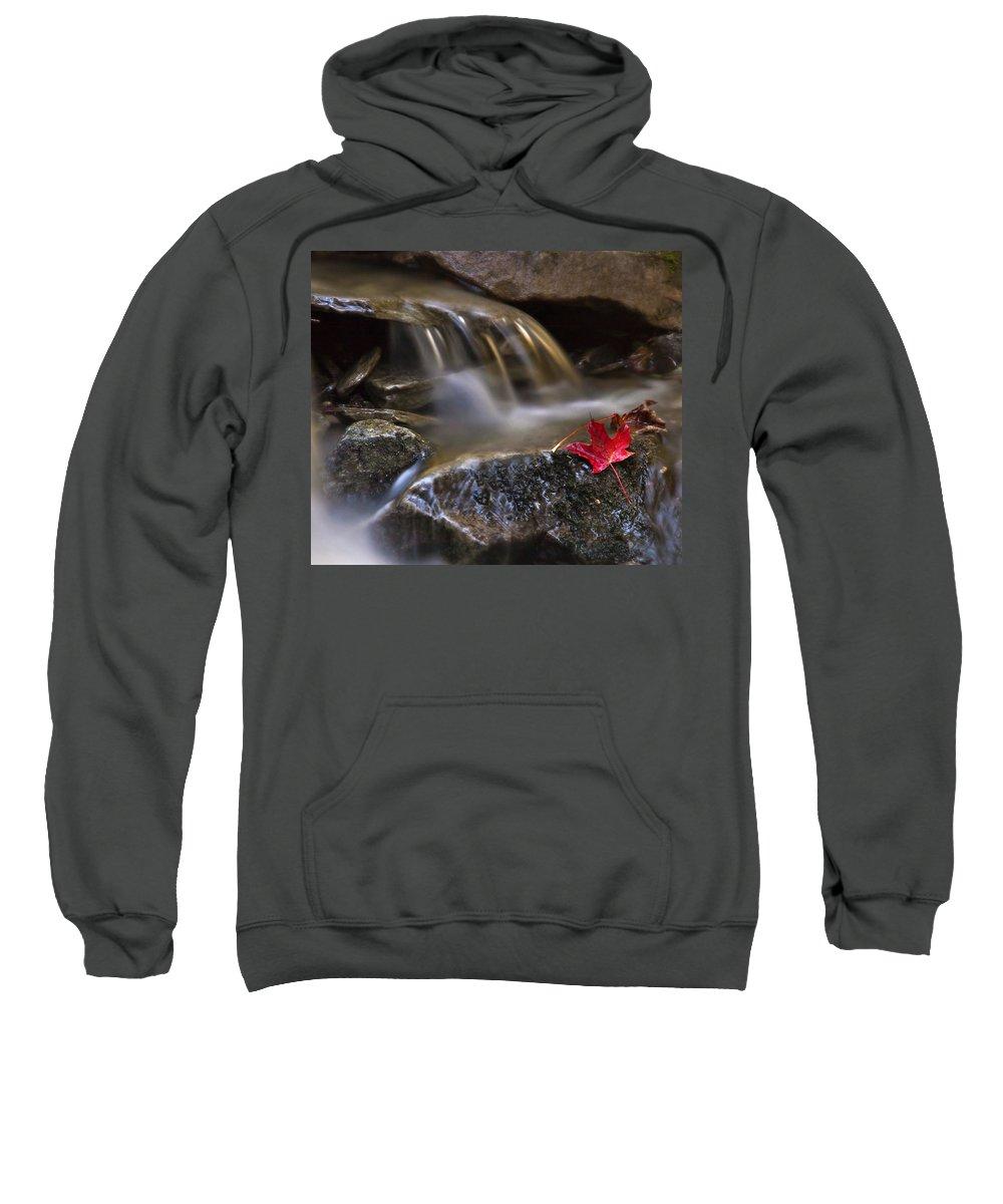 Fall Sweatshirt featuring the photograph Watermark by Evelina Kremsdorf