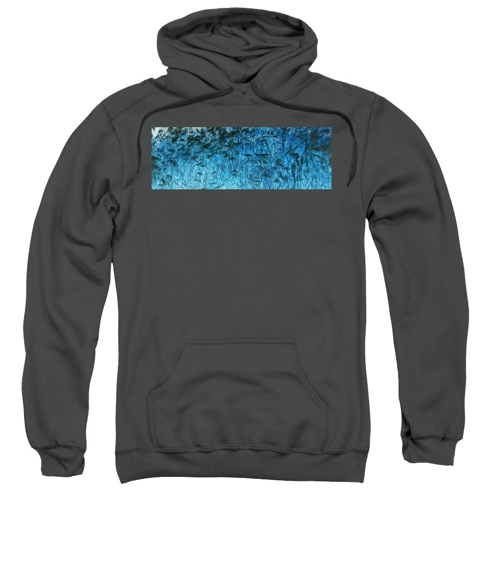 Grass Sweatshirt featuring the photograph Waves Of Blue by Eric Wait