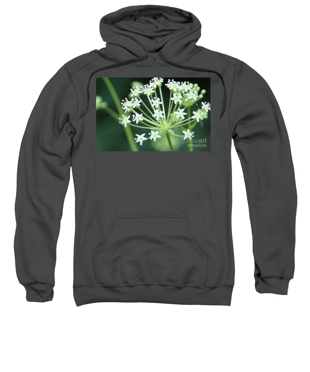 Flower Sweatshirt featuring the photograph Web Design - 2 by Linda Shafer