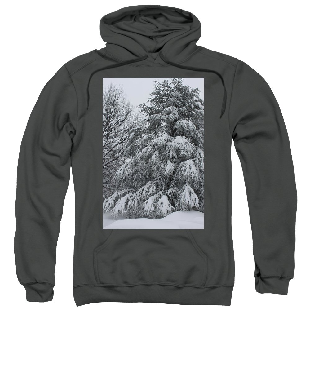 Snow Sweatshirt featuring the photograph Weighed Down by Lauri Novak