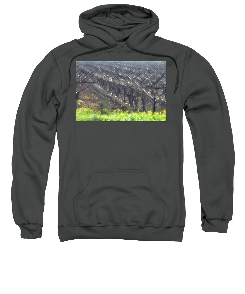Wet Vineyard At Lachish Sweatshirt featuring the photograph Wet Vineyard by Dubi Roman