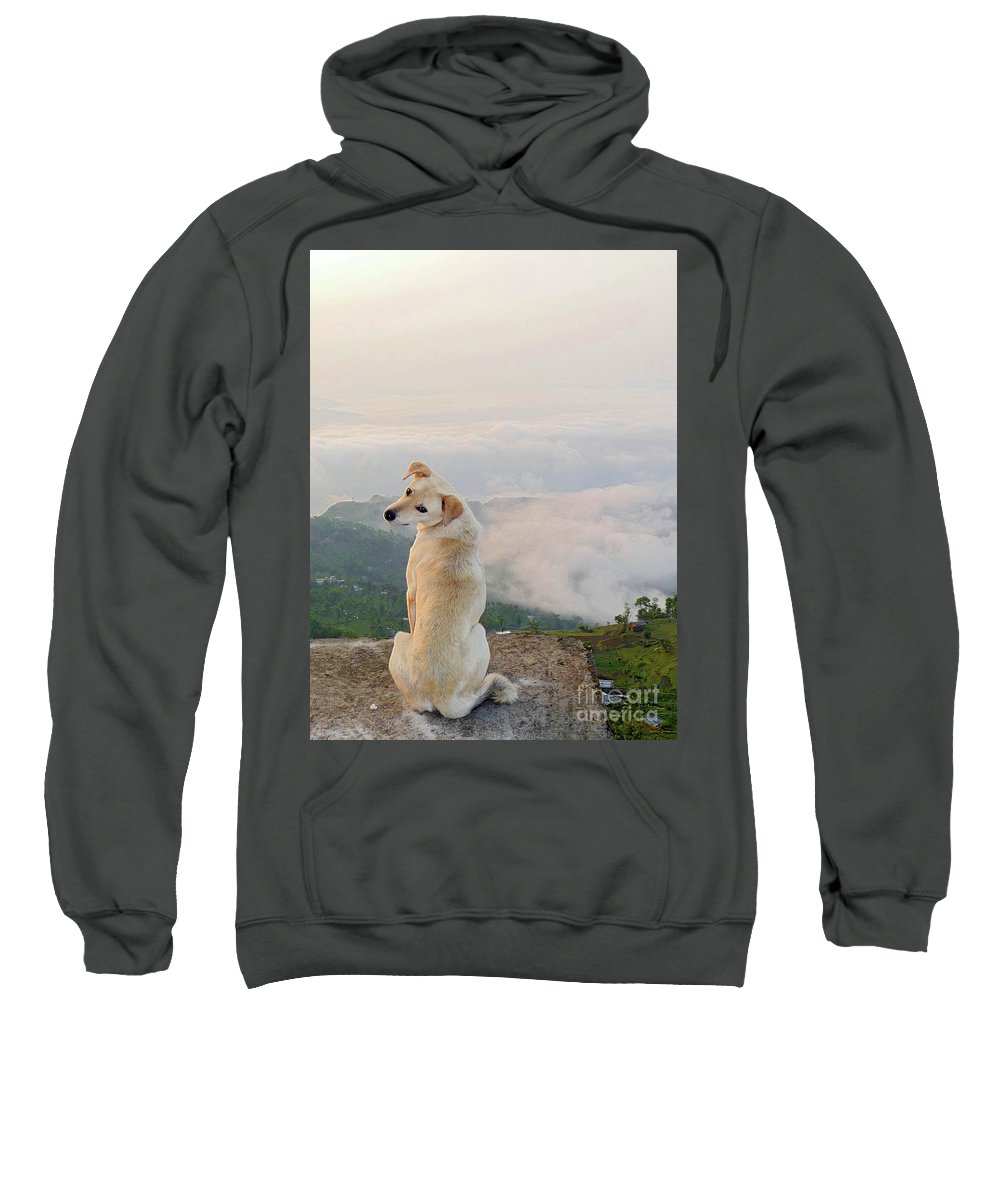 Dog Sweatshirt featuring the photograph What A View In The Annapurnas by Sonal Dave
