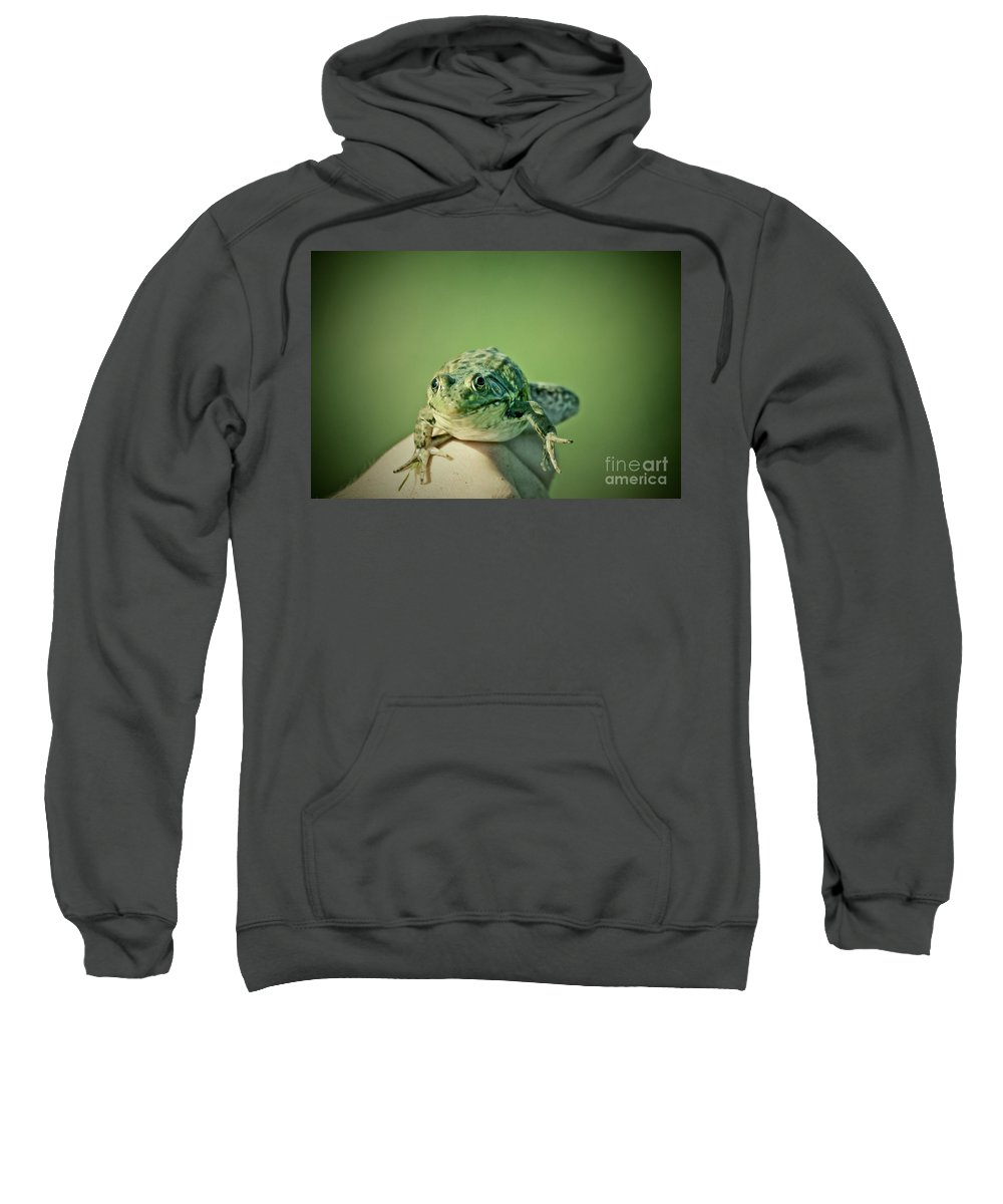 Frog Sweatshirt featuring the photograph What Are You Looking At by Aimelle