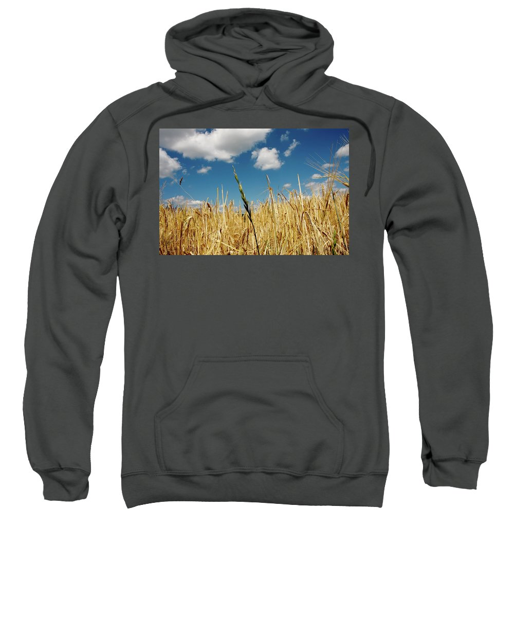 Rudesheim Sweatshirt featuring the photograph Wheat On The Rhine by KG Thienemann