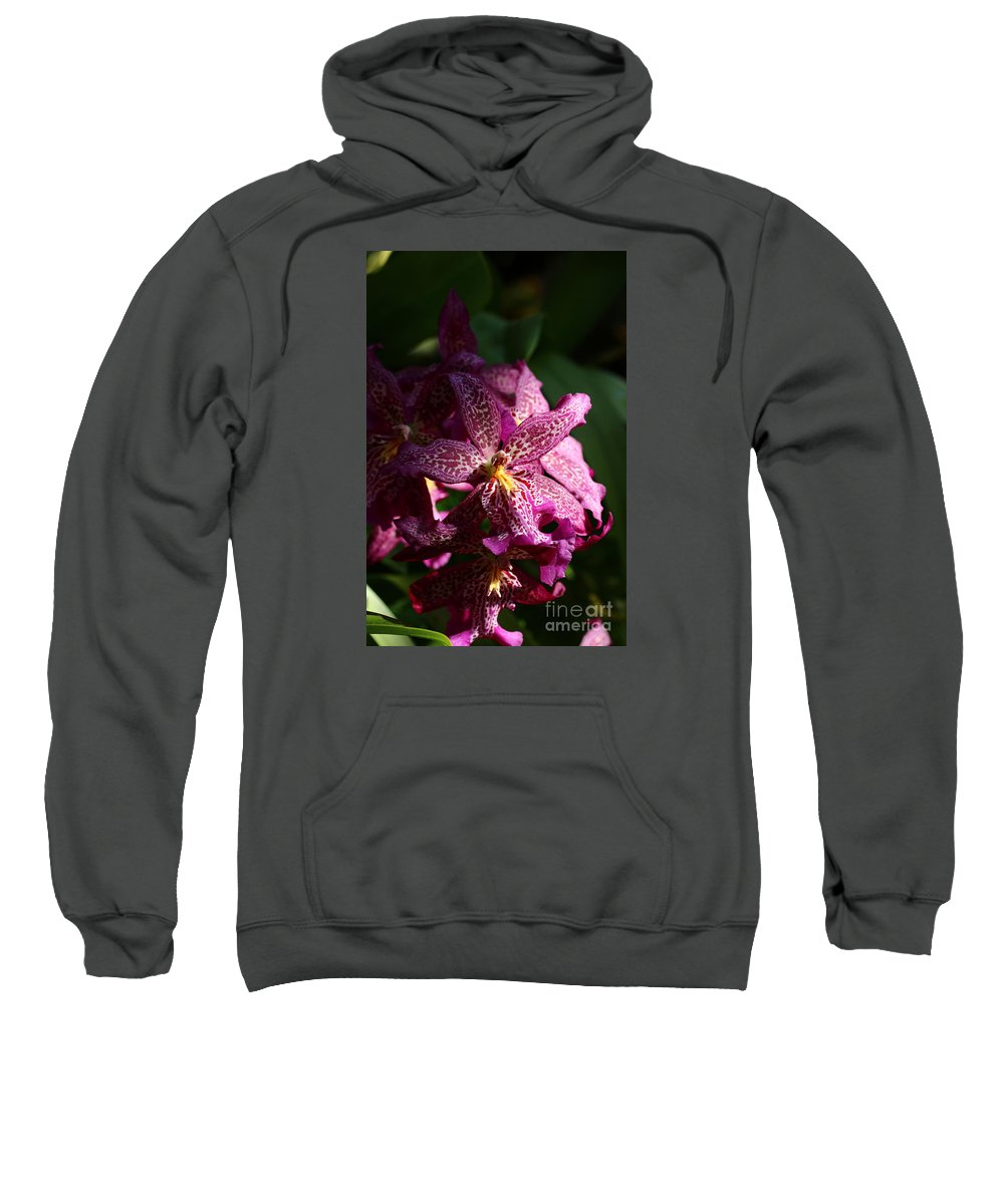 Pink Orchid Sweatshirt featuring the photograph When I See You by Christiane Schulze Art And Photography