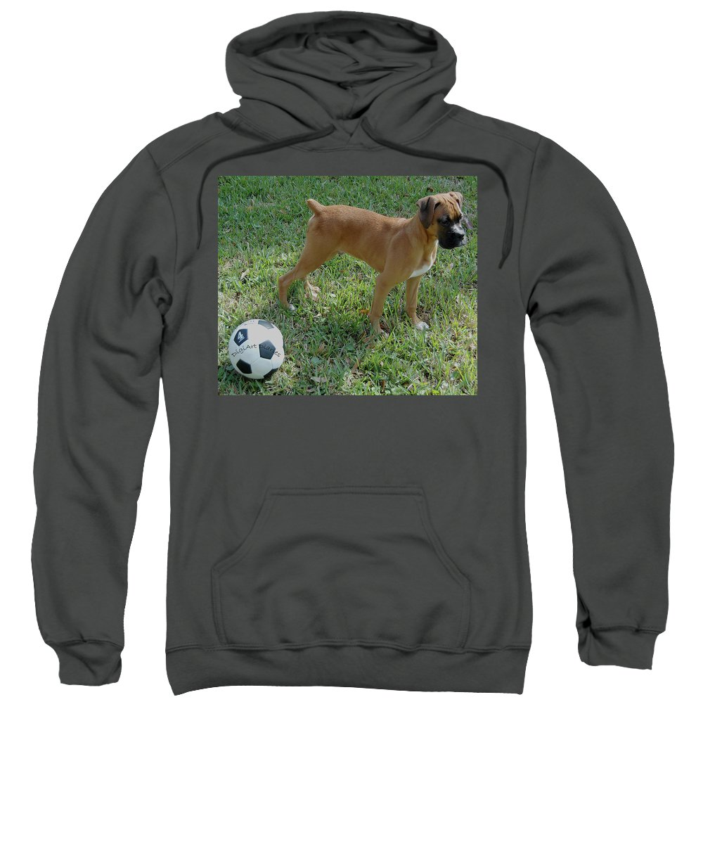 Dog Sweatshirt featuring the digital art When I Was Just A Pup by DigiArt Diaries by Vicky B Fuller