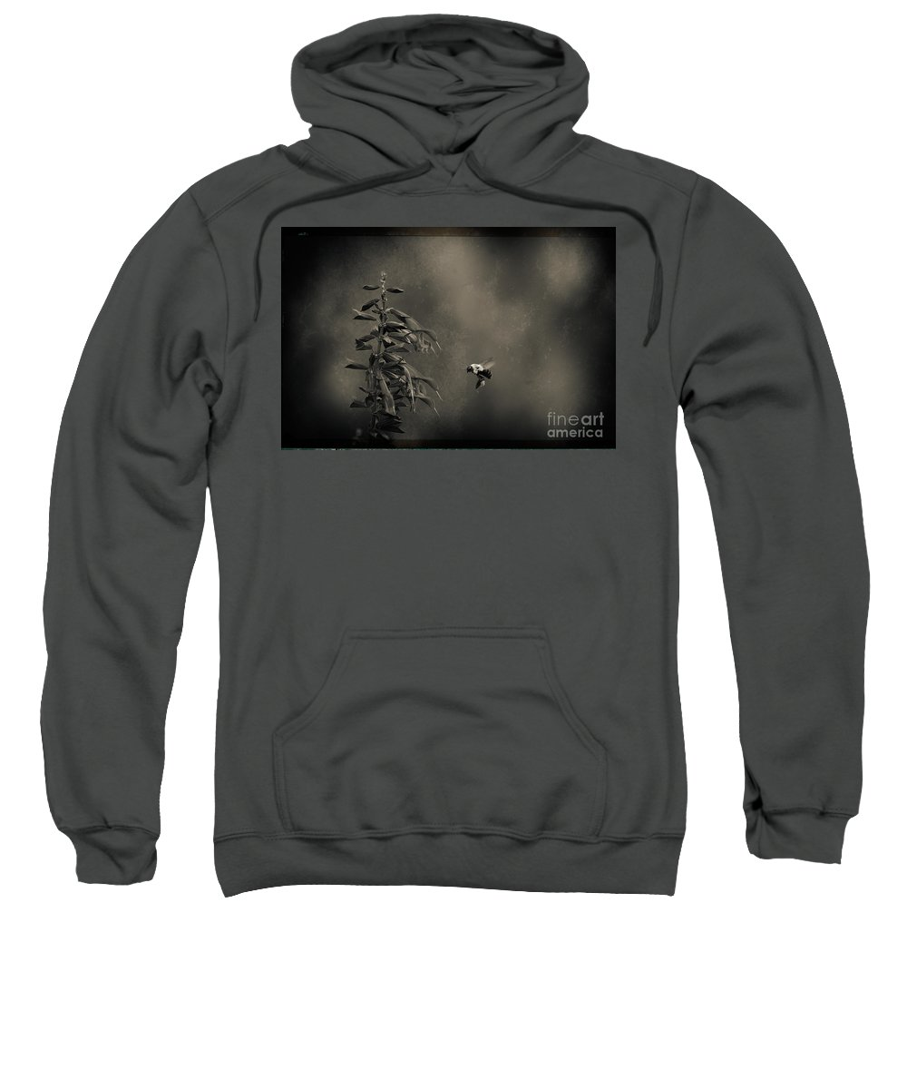 Bee Sweatshirt featuring the photograph When Once A Bee Flew by C L Lassila