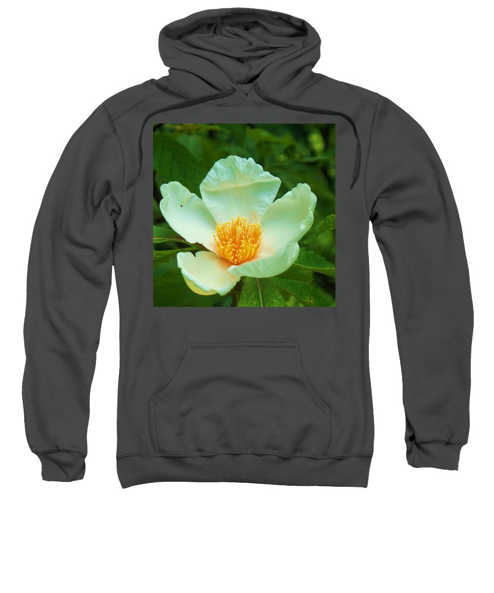 Flora Sweatshirt featuring the painting White And Yellow Flower by Eric Schiabor