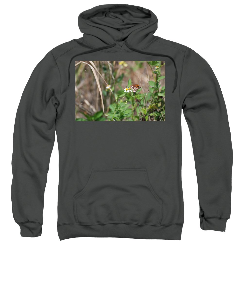 Butterfly Sweatshirt featuring the photograph White Butterfly by Rob Hans