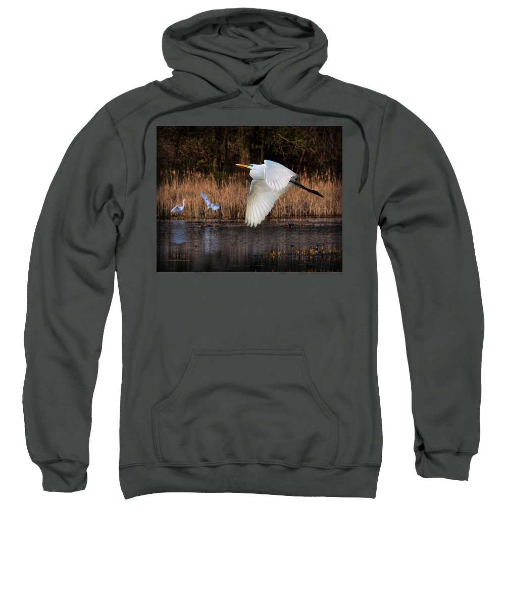 Great White Egret Sweatshirt featuring the photograph White Egret Flyby by Rick Fisk