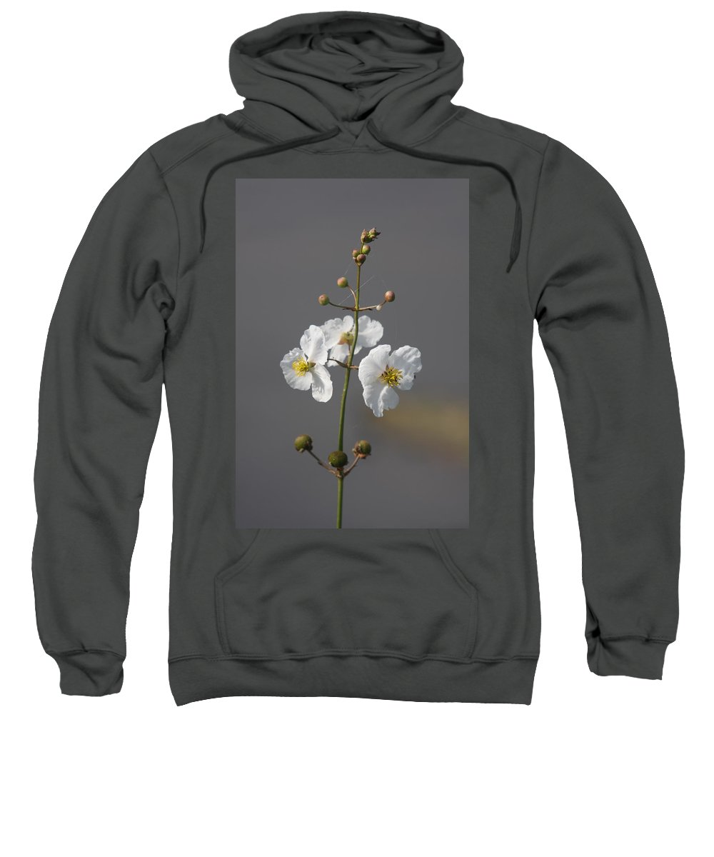 Flowers Sweatshirt featuring the photograph White Flower by Christiane Schulze Art And Photography