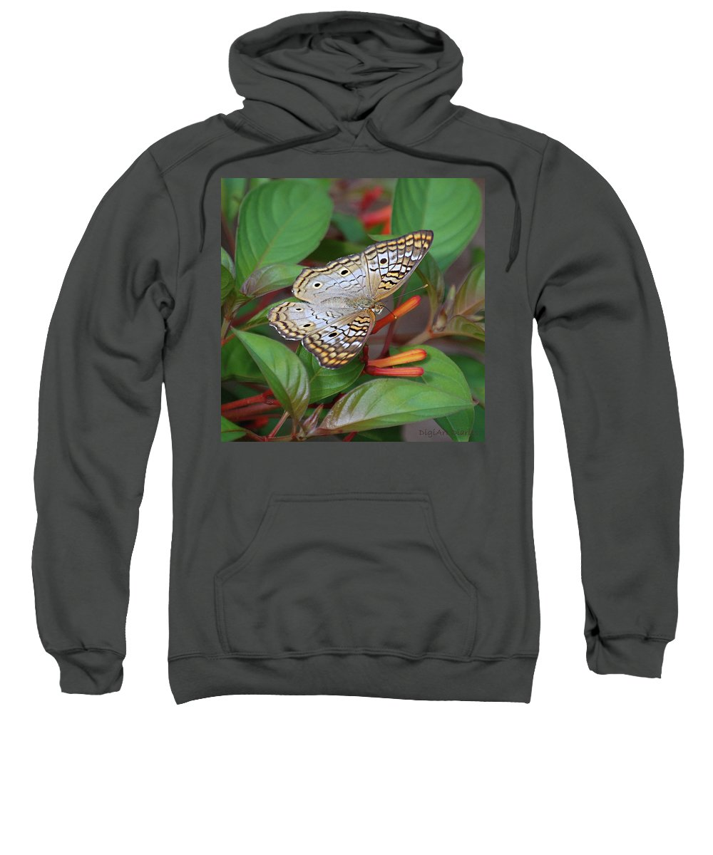 Butterflies Sweatshirt featuring the digital art White Peacock Butterfly by DigiArt Diaries by Vicky B Fuller