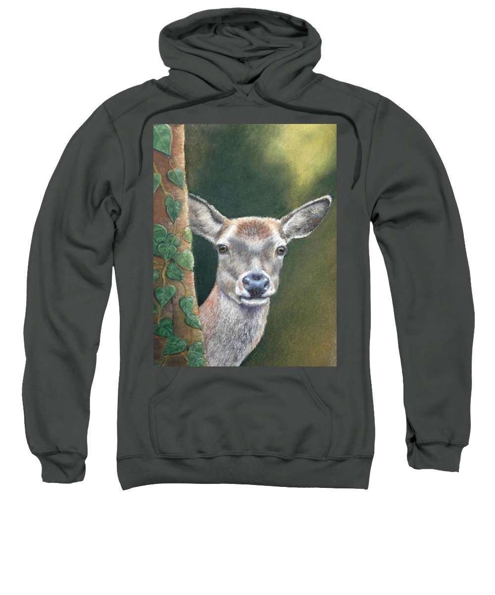 Rainforest Sweatshirt featuring the painting White Tail Doe At Ancon Hill by Ceci Watson