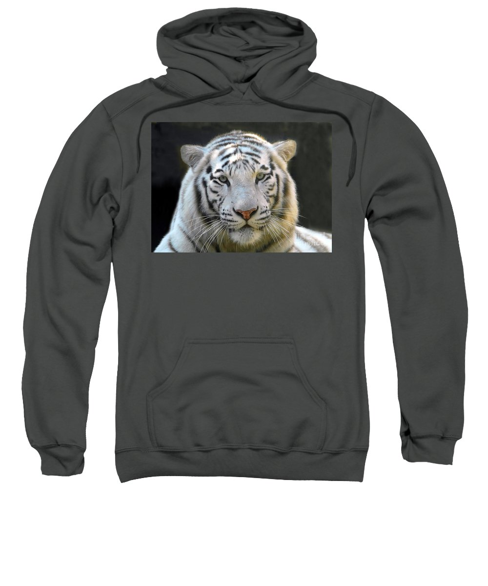 White Tiger Sweatshirt featuring the photograph White Tiger by David Lee Thompson