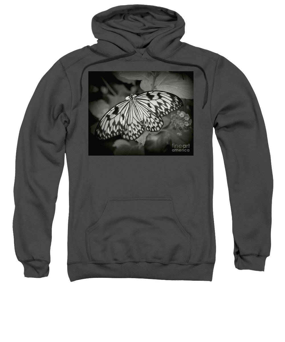 Butterfly Sweatshirt featuring the photograph White Tree Nymph - 6 by Dorothy Hilde