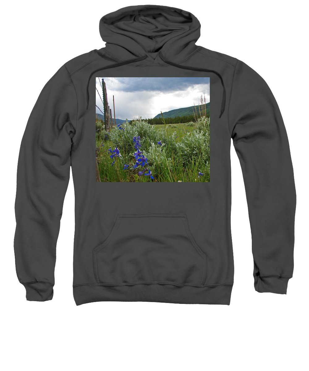 Wild Flowers Sweatshirt featuring the photograph Wild Delphinium by Heather Coen