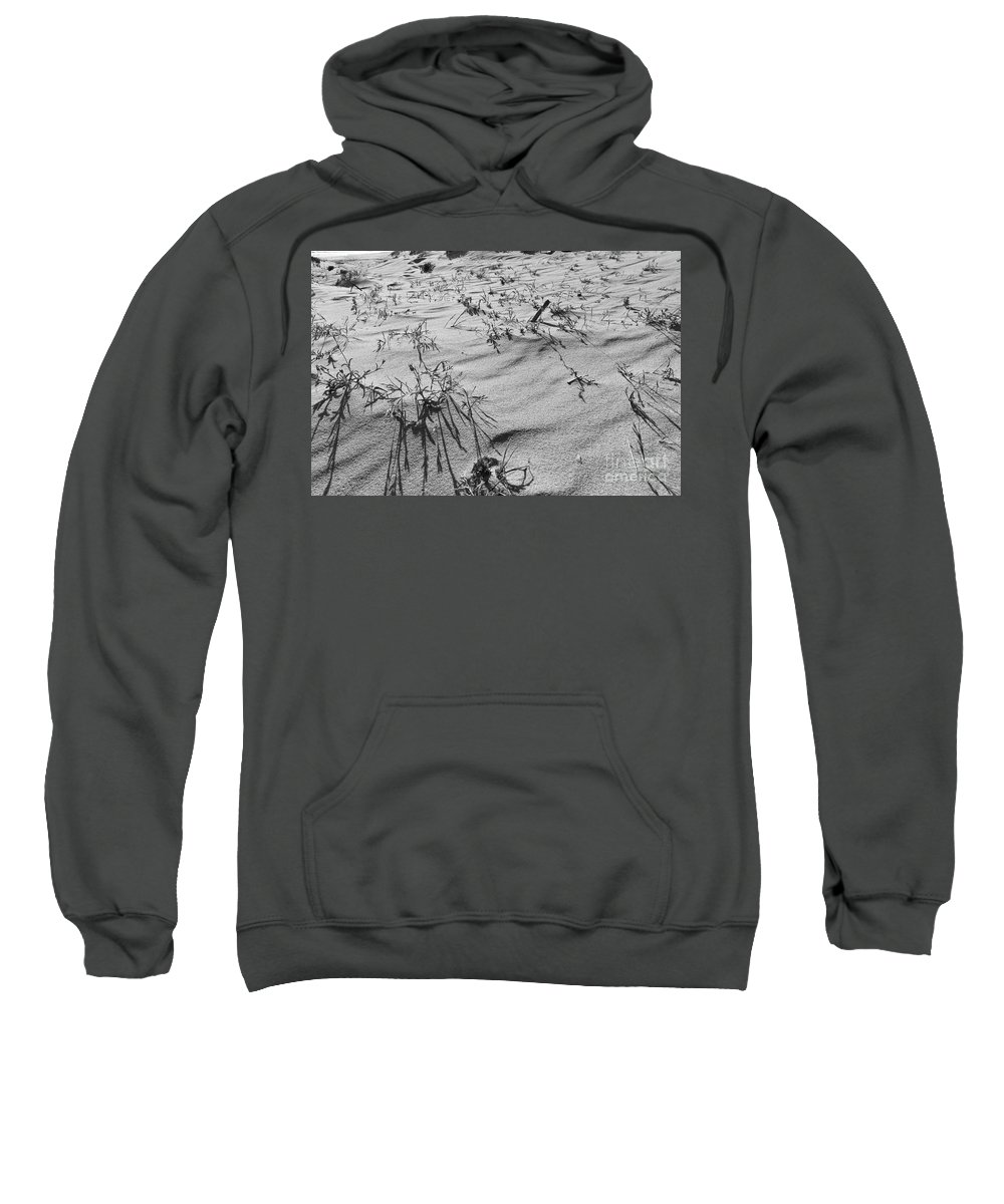 Sea Sweatshirt featuring the photograph Wild Flora And Dunes by Angelo DeVal