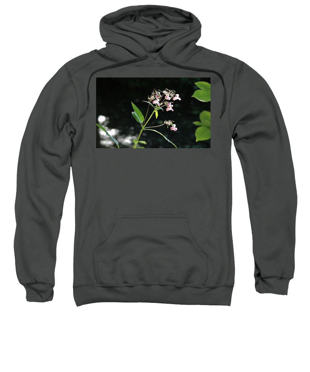 Wild Sweatshirt featuring the photograph Wild Flowers Over Stream by Adrian Wale