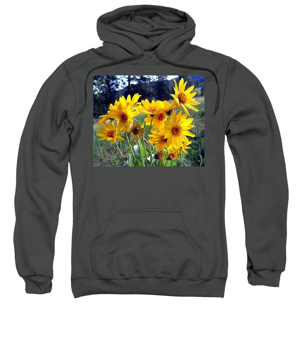 Sunflowers Sweatshirt featuring the photograph Wild Okanagan Sunflowers by Will Borden
