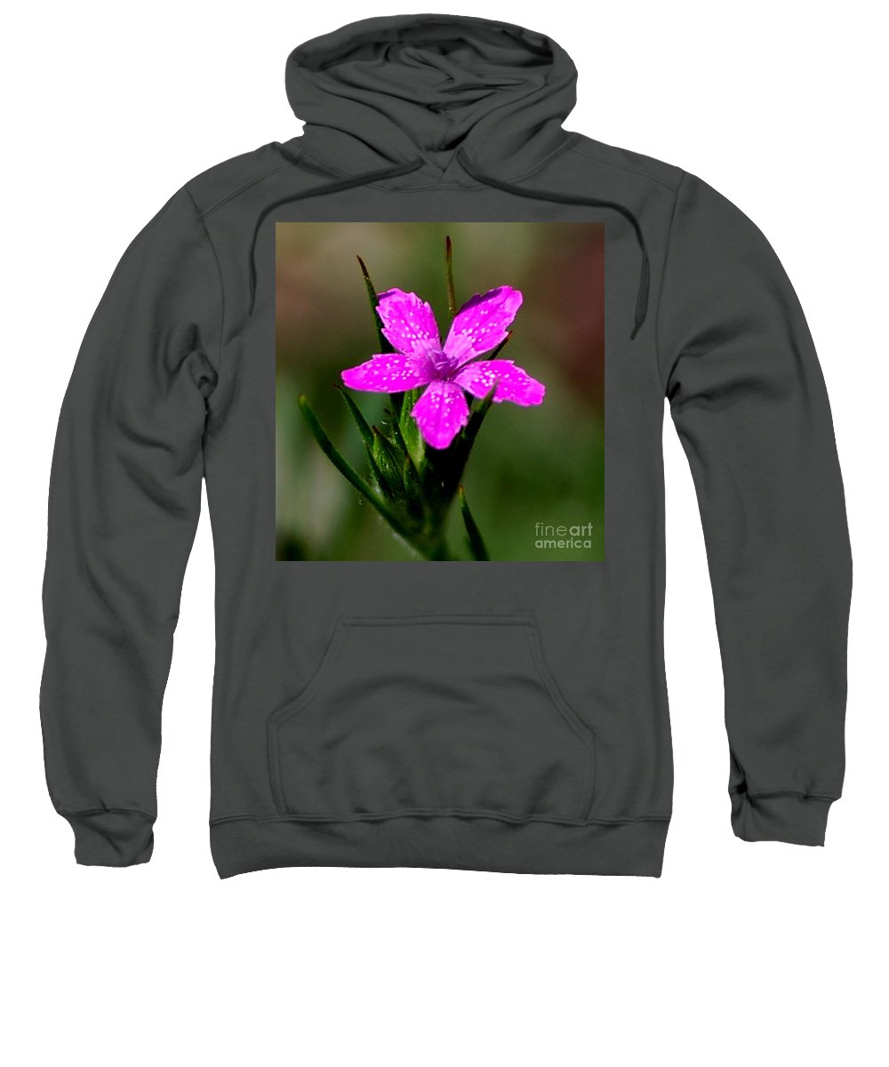 Digital Photo Sweatshirt featuring the photograph Wild Pink by David Lane