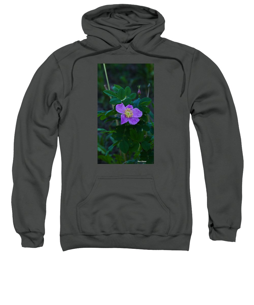 Ron Glaser Sweatshirt featuring the photograph Wild Rose 1 by Ron Glaser