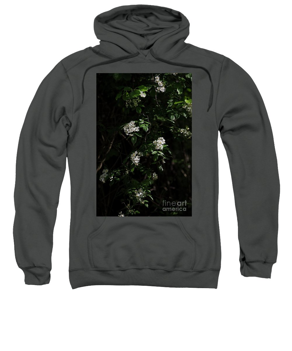 Summer Sweatshirt featuring the photograph Wild Roses by David Bearden