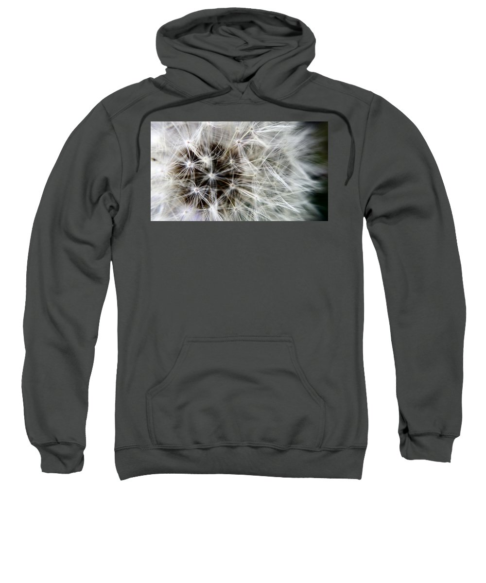 Wildflower Sweatshirt featuring the photograph Wildflower 1 by Belinda Cox