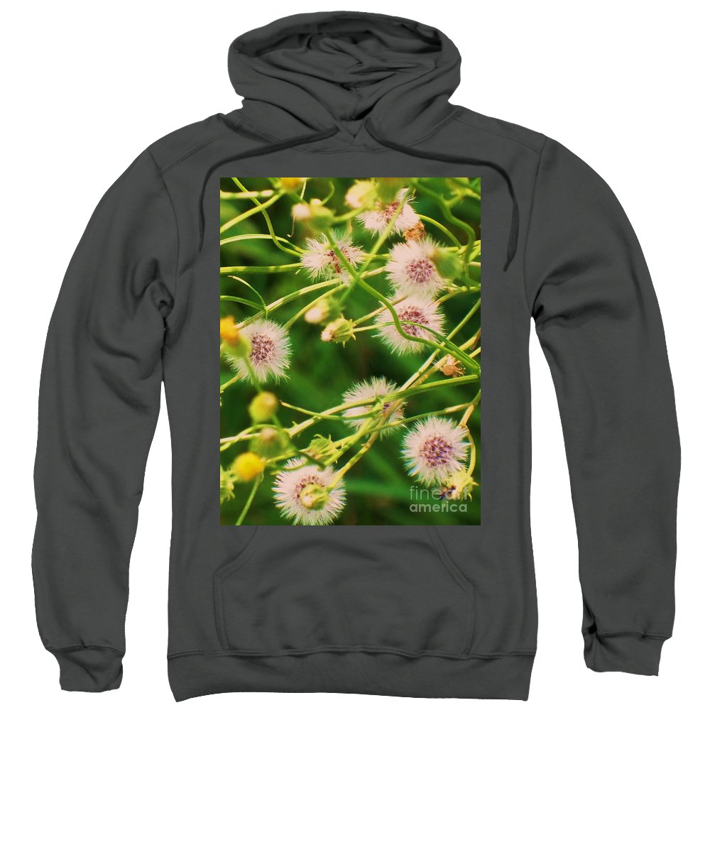 Flowers Sweatshirt featuring the painting Wildflower by Eric Schiabor
