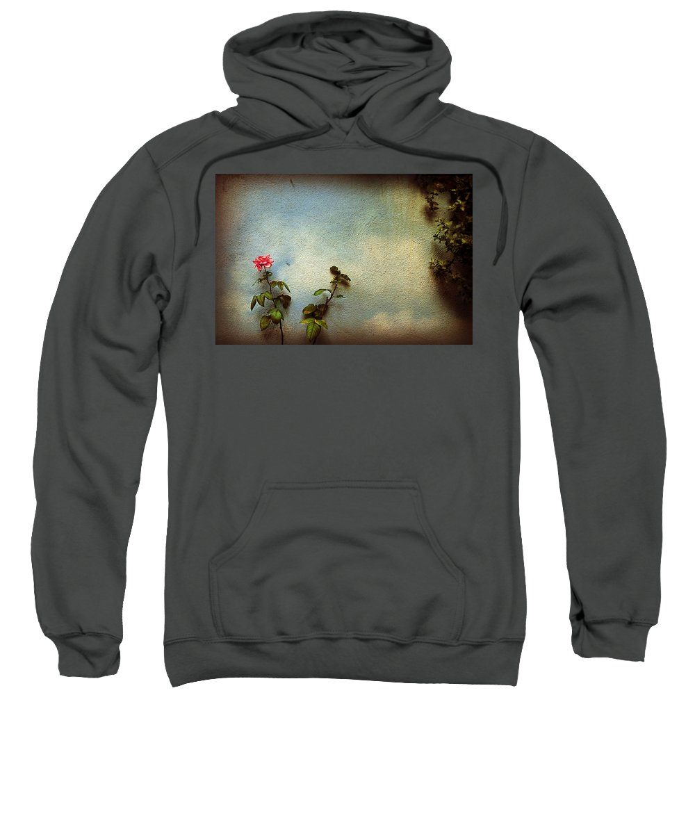 Rose Sweatshirt featuring the photograph Wilting Rose by Silvia Ganora