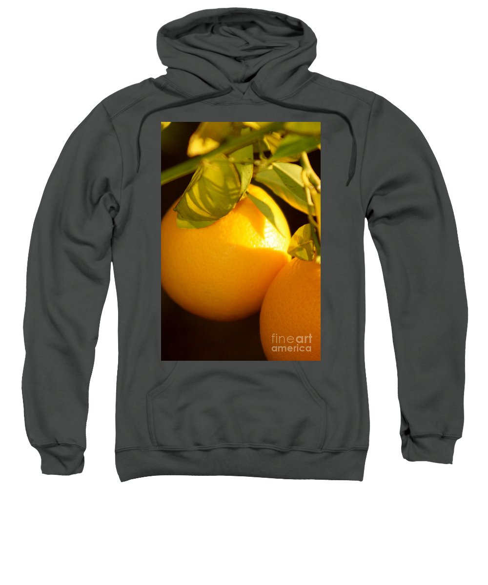 Fruit Sweatshirt featuring the photograph Winter Fruit by Nadine Rippelmeyer
