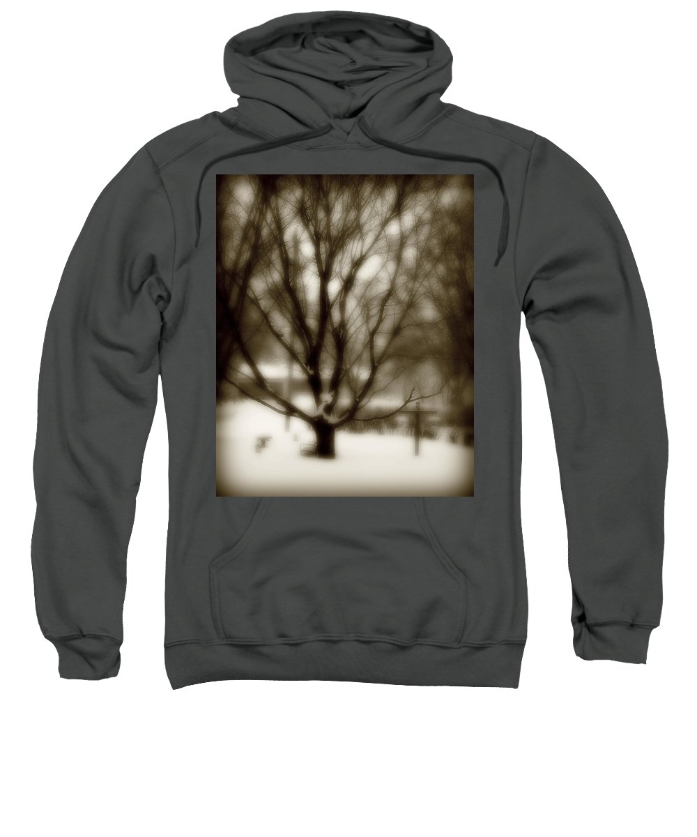 Tree Sweatshirt featuring the photograph Winter Tree 2 by Perry Webster