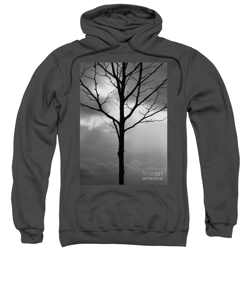 Winter Tree Sweatshirt featuring the photograph Winter Tree by Carol Groenen