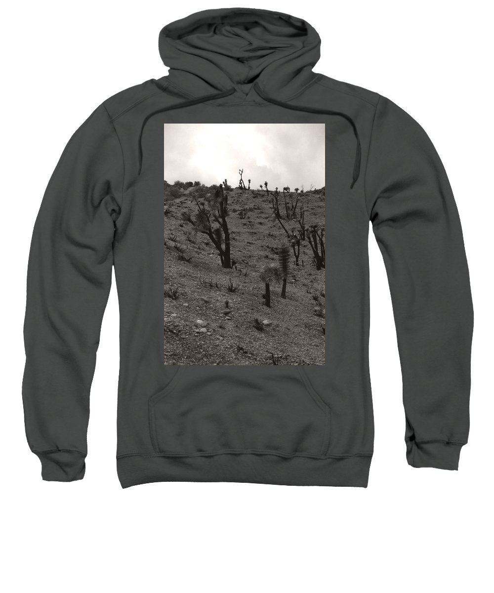 Sweatshirt featuring the photograph Wishbone by Heather Kirk