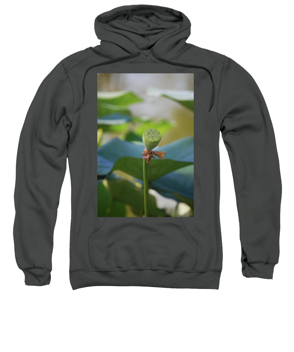 Sweatshirt featuring the photograph Without Protection Number One by Heather Kirk