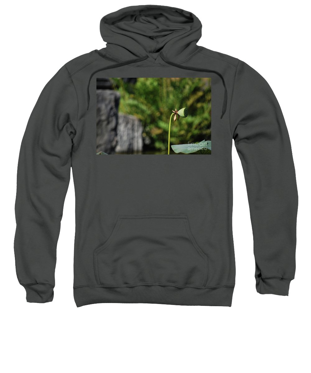 Sweatshirt featuring the photograph Without Protection Number Three by Heather Kirk